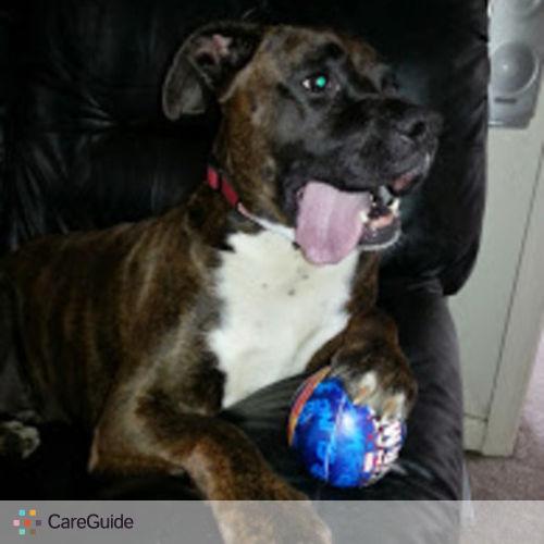 Pet Care Provider April Freel's Profile Picture