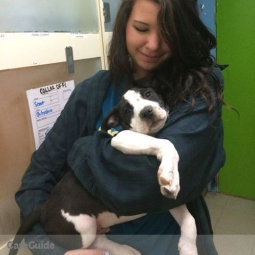 Pet Care Provider Rachael Carter's Profile Picture