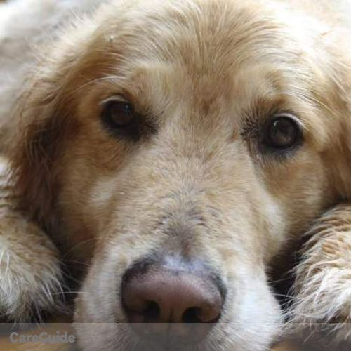 Pet Care Provider Alexandra Simpson's Profile Picture