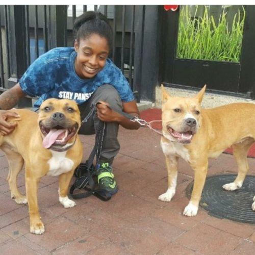 Pet Care Provider Jene H Gallery Image 2
