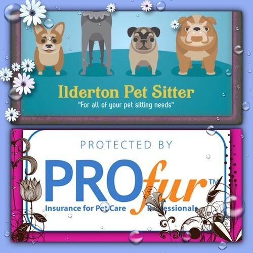 Ilderton Pet Sitter, for all of your pet sitting needs!