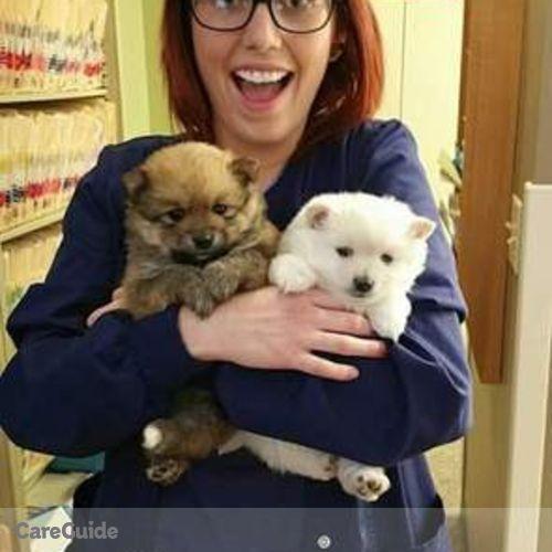 Pet Care Provider Madison Wade's Profile Picture