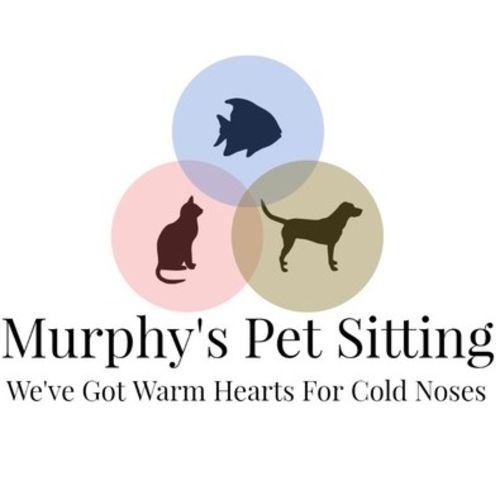 Pet Care Provider Morgan M's Profile Picture