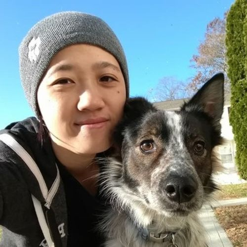 House Sitter Provider Kim Hom's Profile Picture