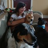Active, Aliquippa-based Dog lover Ready to Look After Your Furbabies