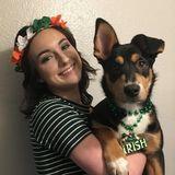 Independent dog mom, trustworthy house sitter
