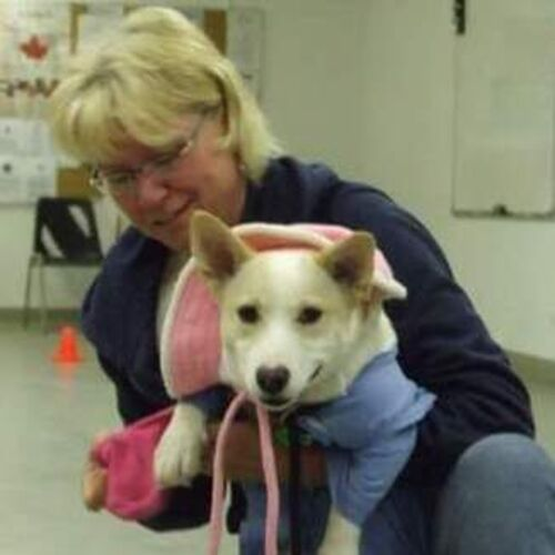 Available: Caring Pet Supervisor in Calgary, Alberta