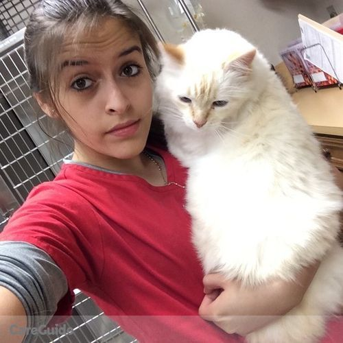 Pet Care Provider Yenny Zuniga's Profile Picture