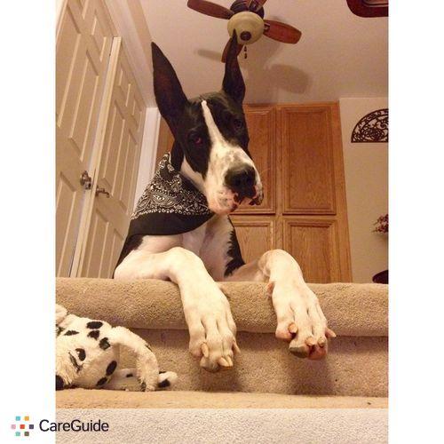 Pet Care Provider Brooke Hubbard's Profile Picture