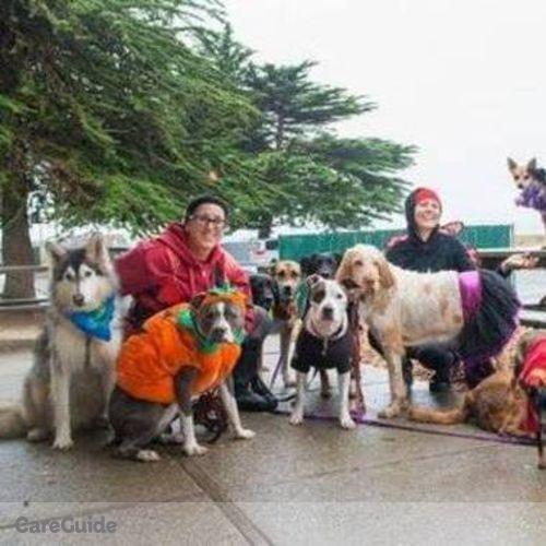 Pet Care Provider Doggie Dance's Profile Picture