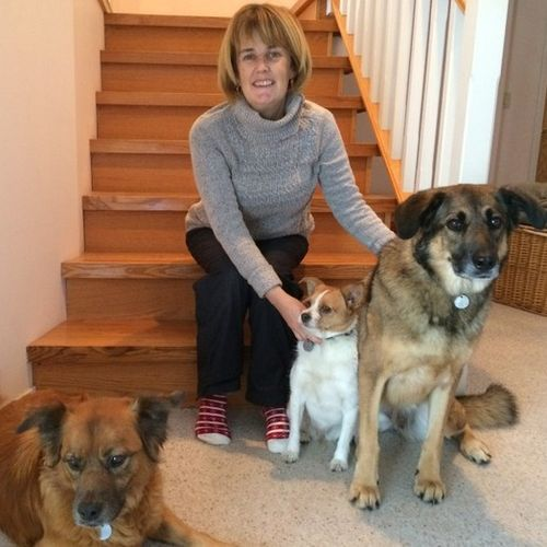 Pet Care Provider Michelle C's Profile Picture