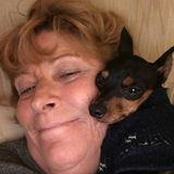 For Hire: Present House Sitting Service Provider and dog loverin Vero Beach