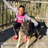 Dog Walker, Pet Sitter in San Jose