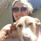 Dog Walker, Pet Sitter in North Haven