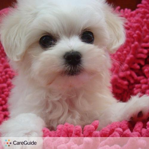 Pet Care Provider Farah S's Profile Picture