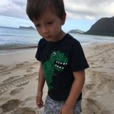 Babysitter Job, Daycare Wanted, Nanny Job in Honolulu