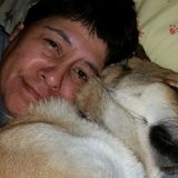 Excellent pet and house sitter! I absolutely love animals and am an honest, friendly and caring person.