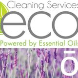 Eco Cleaning Service Detailed Professional
