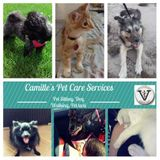 Pet sitter/ Licensed vet assistant