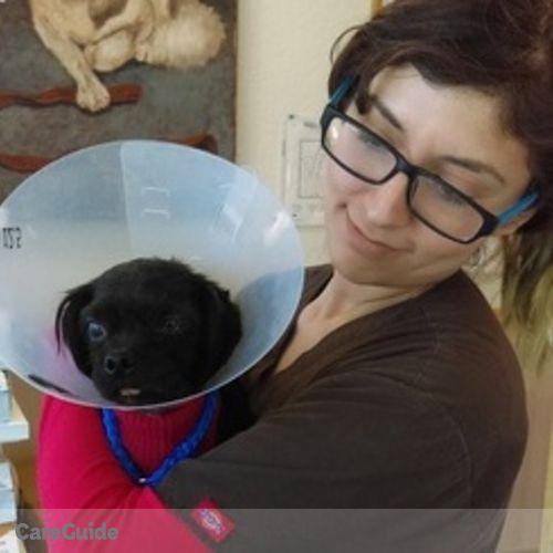 Pet Care Provider Cristina F's Profile Picture