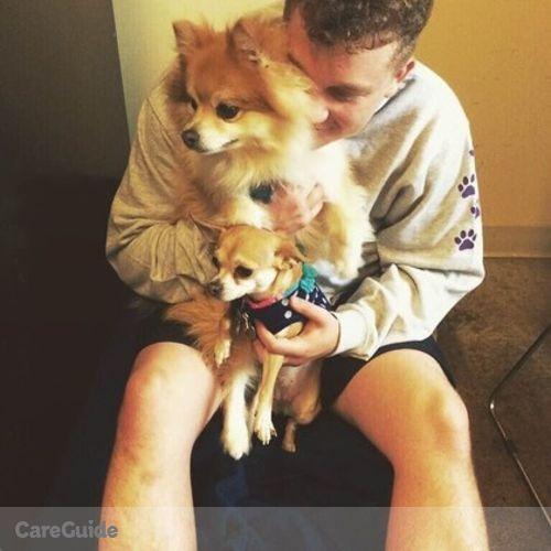 Pet Care Provider Leonardo Chrzanowski's Profile Picture