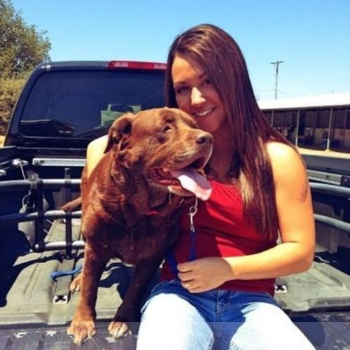 Pet Care Provider Lisa Cooper's Profile Picture