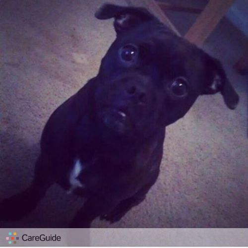 Pet Care Provider Micqualyn Fuller's Profile Picture
