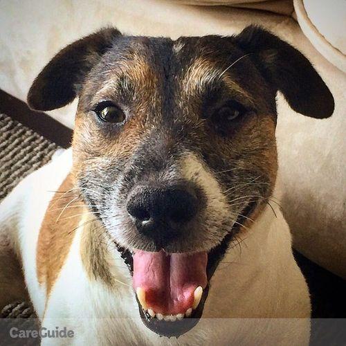 Pet Care Job Adriana Arocha's Profile Picture