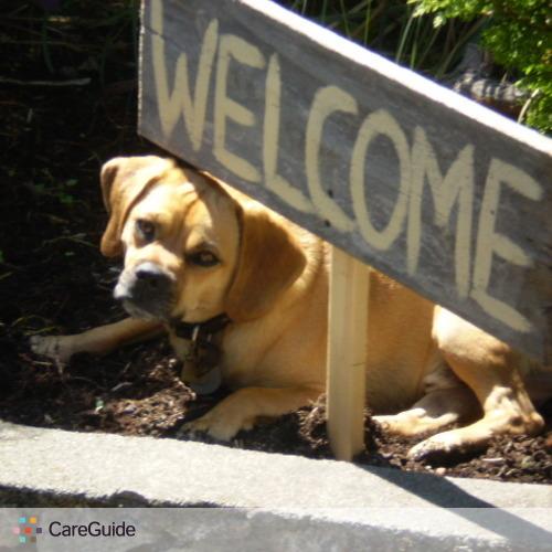 Pet Care Job David Smith's Profile Picture