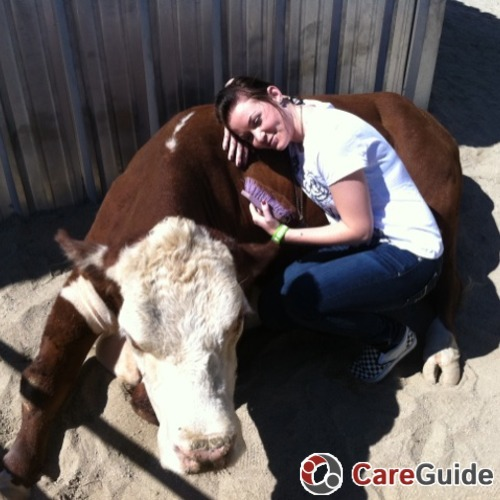 Pet Care Provider Carly Miller's Profile Picture