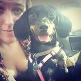 Dog Walker, Pet Sitter in Chesapeake