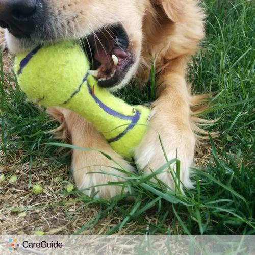 Pet Care Provider Emily Trojan's Profile Picture