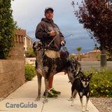 Dog Walker, Pet Sitter, Kennel in Las Vegas