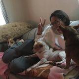 Reliable, Trustworthy, Active, & Involved Dog walker/sitter. Work around Animals.
