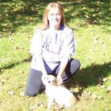 Loving Dog or Cat Sitter for Hire