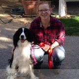 Dog Walker, Pet Sitter in Palmer