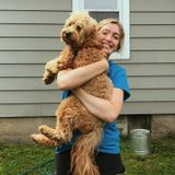 Pet Care Provider With Experience