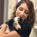 Pet Care Specialist looking for extra pet sitting work! Has professional experience!