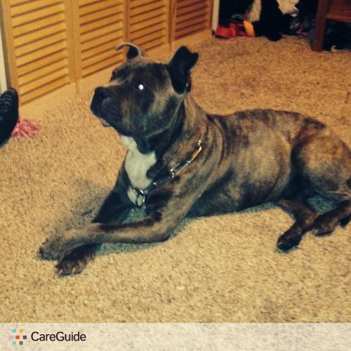 Pet Care Provider Alisha Wilburn's Profile Picture