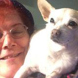 Pet Lover in Gardena Ca seeks sitting walking job in South Bay or LA / long Beach area