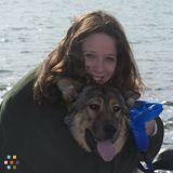 Dog Walker, Pet Sitter in Keller