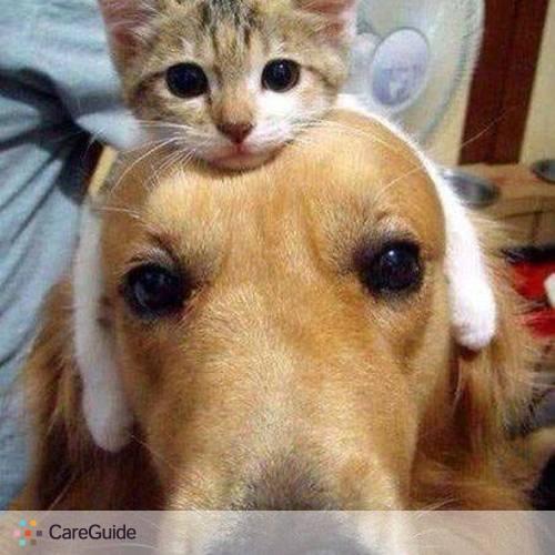 Pet Care Provider Deborah S's Profile Picture