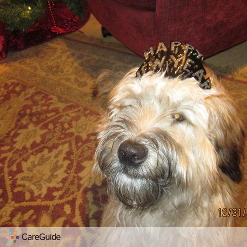 Pet Care Provider Cathy Smith's Profile Picture