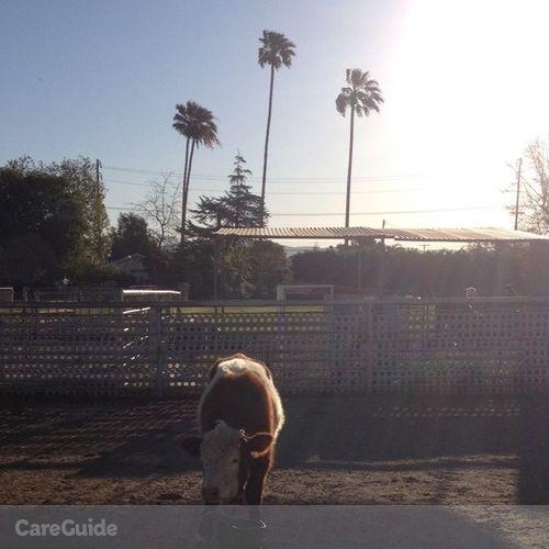 Pet Care Provider Nicki T's Profile Picture