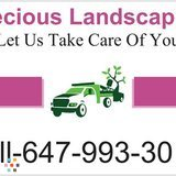 Precious Landscaping And Design