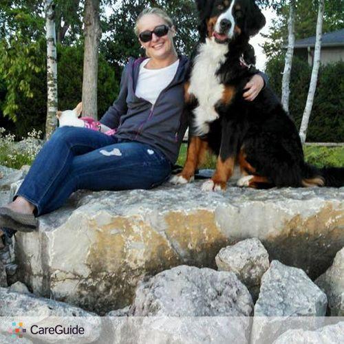 Pet Care Provider Kate D's Profile Picture