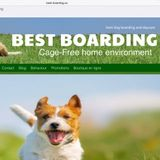 Secure cage-free loving environment owned and operated by Canine Behaviourist