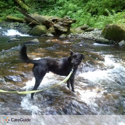 Pet Care Provider Dominick Taylor's Profile Picture
