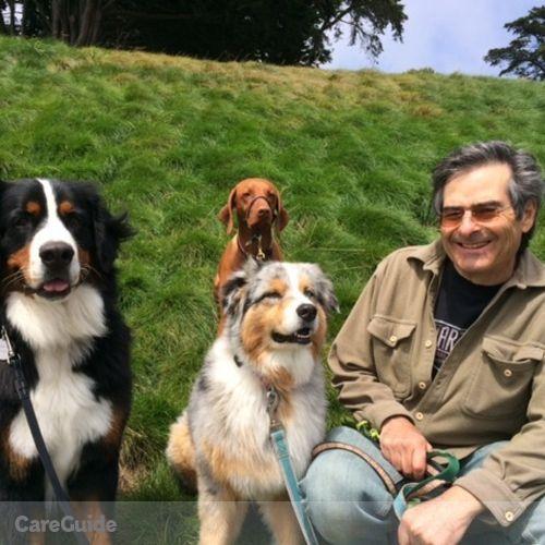 Pet Care Provider Adam Teitelbaum's Profile Picture