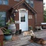 House Sitter Job in Redwood